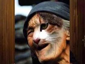 令人心生恐惧的猫脸老太太