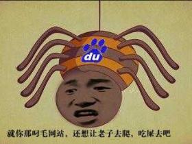 刘连康:教你如何正确认识百度蜘蛛(BaiduSpider)IP段